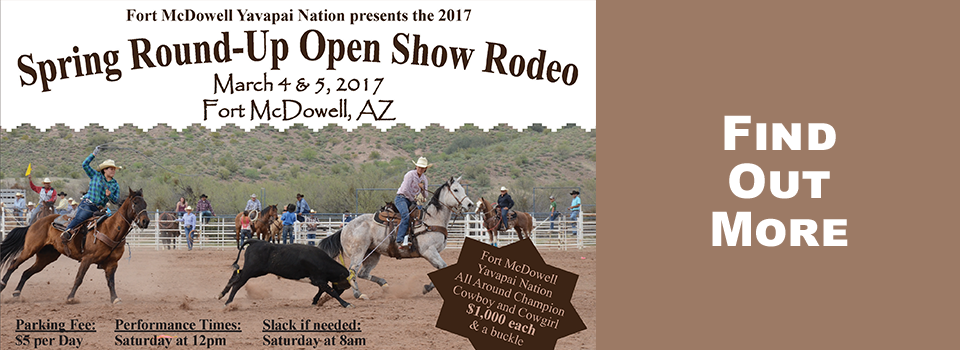 Spring-Rodeo-2017-Banner